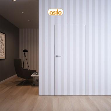 drzwi asilo